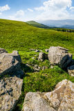 Meadow with boulders in Carpathian mountains in summer. Grassy meadow with giant boulders on the slope. mountain ridge on a beautiful sunny summer day. wonderful Royalty Free Stock Photography