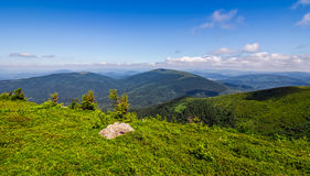 Meadow with boulders in Carpathian mountains in summer. Grassy meadow with giant boulders on the slope. mountain ridge on a beautiful sunny summer day. wonderful Royalty Free Stock Photos