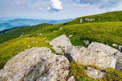 Meadow with boulders in Carpathian mountains in summer Royalty Free Stock Photos
