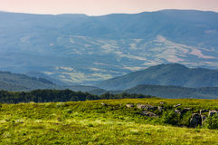 Meadow with boulders in Carpathian mountains in summer. Landscape with grassy meadow with giant boulders on the slope of a hill in Carpathian mountain ridge on a Stock Photos