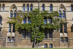 The Meadow Building at Christ Church College in Oxford Stock Photography