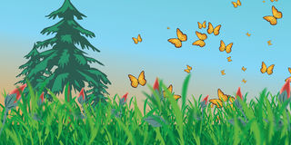 Meadow with butterflies Royalty Free Stock Photo