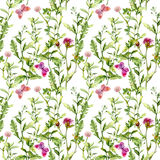 Meadow with butterflies, herbs and flowers. Seamless watercolor floral pattern. Stock Photo