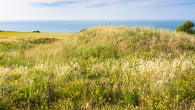 Meadow on Cap Gris-Nez in France. Travel to France - meadow on Cap Gris-Nez of English channel in Cote d'Opale district in Pas-de-Calais region of France in Royalty Free Stock Photos