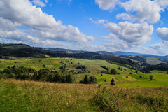 Meadow in the Carpathian Stock Photography