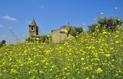 Meadow and castle at Medellin (Extremadura, Spain) Stock Photos