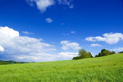Meadow with clouds. Stock Images