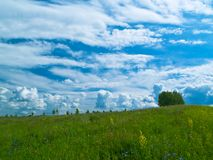 Meadow and clouds horizontal stock image