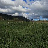 Meadow and cloudy sky in Pyrennes. Royalty Free Stock Images