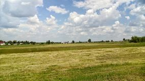 Meadow and cloudy sky. Yellow-green meadow and cloudy sky above Royalty Free Stock Photos