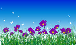 Meadow color background Royalty Free Stock Images