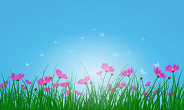 Meadow color background. With butterflies and sun. All objects are separated. Vector illustration with transparency. Eps 10 Stock Photos