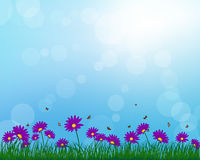 Meadow color background. With butterflies and sun. All objects are separated. Vector illustration with transparency. Eps 10 Royalty Free Stock Photography