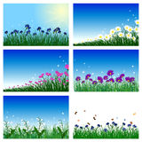 Meadow color background set. With sun. All objects are separated. Vector illustration with transparency  and mesh. Eps 10 Royalty Free Stock Photos