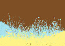 Meadow with colored grass. Stock Photography
