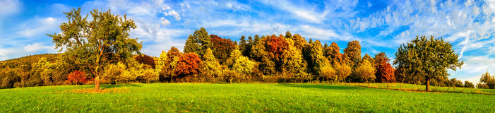 Meadow and colorful trees in autumn Royalty Free Stock Photo