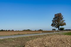 Road and corn stubble on route called Romantic Road, Germany royalty free stock photo