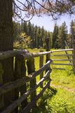 Meadow Corral. An old corral in a meadow in the Sierra Nevada Mountains Stock Images