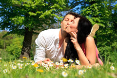 Meadow couple Royalty Free Stock Photography
