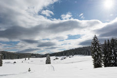 Meadow covered with snow. With cross-country skiing track Stock Photo