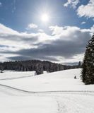 Meadow covered with snow. With cross-country skiing track Stock Image