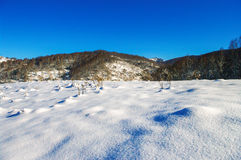 Meadow covered with snow in the mountains in winter. Royalty Free Stock Photo