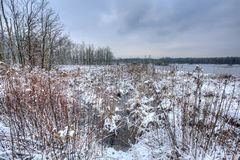 Meadow covered with snow in winter. Royalty Free Stock Photography