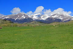 Meadow and Crazy Mountains, Montana. Landscape with Crazy Mountains in Montana Royalty Free Stock Image