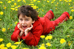 Meadow and dandelions. Spring day. Game on a meadow with dandelions Royalty Free Stock Photo