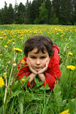 Meadow and dandelions. Spring day. Game on a meadow with dandelions Royalty Free Stock Photos