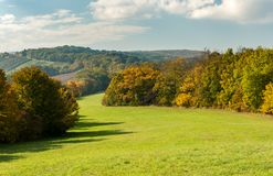 Meadow and deciduous forest in autumn with colored leaves Royalty Free Stock Photo