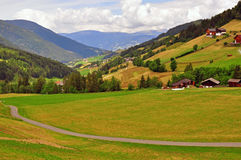 Meadow in Dolomites Stock Photography