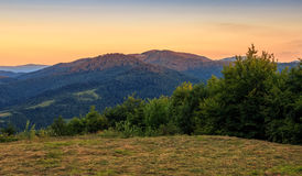 Meadow on the edge of a hillside in the morning. Morning light over mountain top viewed from the edge of meadow with hay on hillside Royalty Free Stock Photos