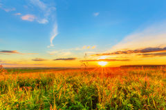 Meadow, evening sky and sunset. Wide meadow beneath evening sky and sunset Stock Images