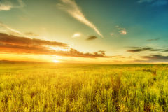 Meadow, evening sky and sunset Stock Photo
