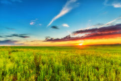 Meadow, evening sky and sunset. Wide meadow beneath evening sky and sunset Stock Image