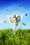 Meadow fairy. Tender fairy  with butterflies on meadow Stock Photos