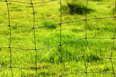 Meadow fence Royalty Free Stock Image