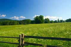 Meadow with fence and blue sky. Royalty Free Stock Image