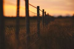 Meadow and Fence in southern Iceland Royalty Free Stock Image