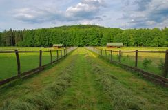 Meadow, fencing, hut, path Royalty Free Stock Photography