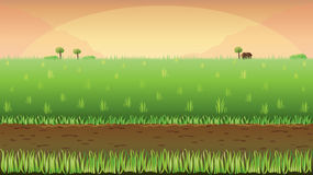 Meadow field background Stock Images