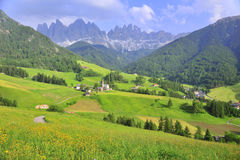meadow field in mountain Stock Images
