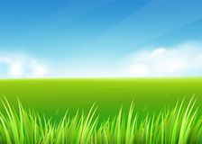 Meadow field. Summer or spring nature background with green grass landscape. Clouds, sky. Farmland scene. Vector illustration Royalty Free Stock Images
