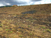 Meadow after the fire, under a cloudy sky Stock Photo
