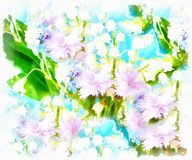 Meadow flower.  computer aquarelle painting collage. Royalty Free Stock Photos