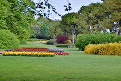 Meadow with flowerbeds. Meadow with tulip flowerbeds in a park royalty free stock photo
