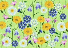 Meadow flowers Royalty Free Stock Photo