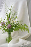 Meadow flowers bouquet. Still life with field flowers bouquet Stock Images