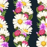 Meadow flowers seamless Royalty Free Stock Images